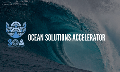 Ocean Solutions Accelerator doubles down on blue economy with new track for later-stage companies – TechCrunch